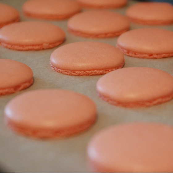 the macarons have landed